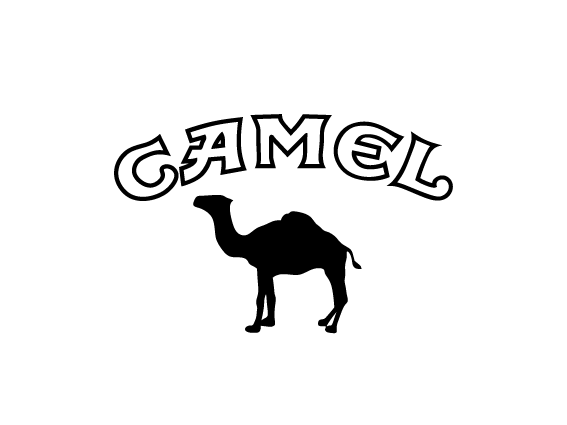 Camel-140×90